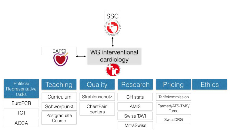 WG interventional cardiology